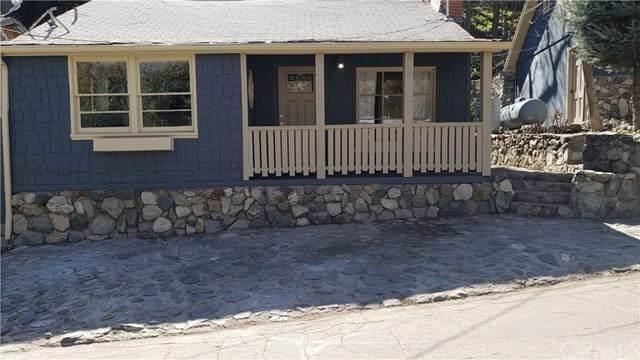 13995 Hazel Drive, Lytle Creek, CA 92358 (#IV21040727) :: The Alvarado Brothers