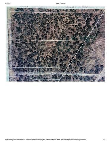 0 Ranchero Rd, Oak Hills, CA 92344 (#TR21041099) :: EXIT Alliance Realty