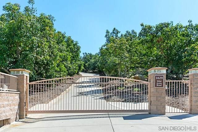 1629 Wild Acres Rd, Vista, CA 92084 (#210005150) :: Millman Team