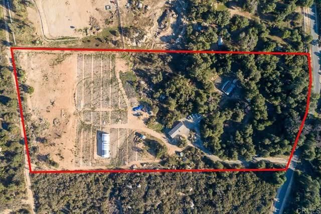7250 Rainbow Heights, Fallbrook, CA 92028 (#NDP2102132) :: Millman Team