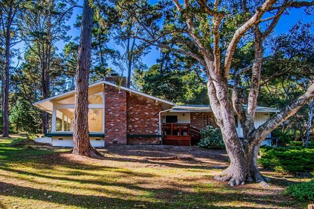 1 Forest Knoll Road, Monterey, CA 93940 (#ML81831984) :: Necol Realty Group
