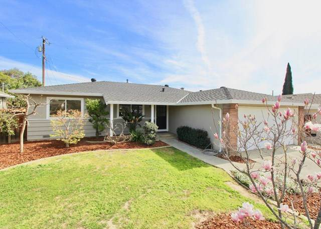 874 Gwen Drive, Campbell, CA 95008 (#ML81832158) :: The Laffins Real Estate Team