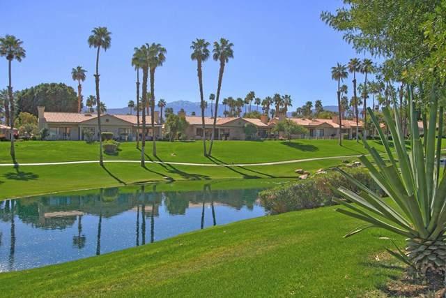 38651 Wisteria Drive, Palm Desert, CA 92211 (#219058213DA) :: Better Homes and Gardens Real Estate Vogler Feigen