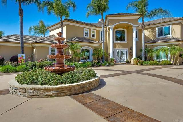 30270 Montrachet Street, Bonsall, CA 92003 (#NDP2102280) :: Mainstreet Realtors®