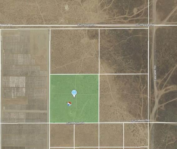 118 Sun Mesa Road, Joshua Tree, CA 92252 (#219058256PS) :: Millman Team