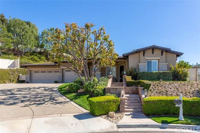 7630 E Spotted Pony Lane, Anaheim Hills, CA 92808 (#OC21045039) :: The Kohler Group