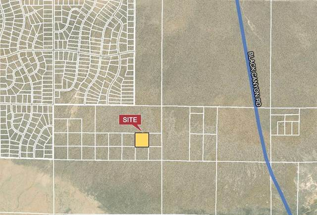 0 Black Canyon Road, Barstow, CA 92311 (#532772) :: Frank Kenny Real Estate Team