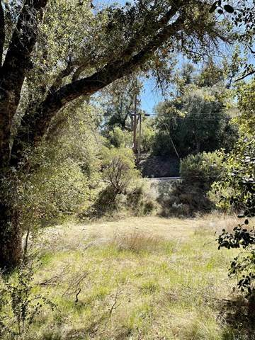 7524 Corte Madera Rd, Pine Valley, CA 91962 (#PTP2101506) :: American Real Estate List & Sell