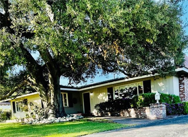 1019 Panorama Drive, Arcadia, CA 91007 (#WS21047746) :: The Houston Team | Compass