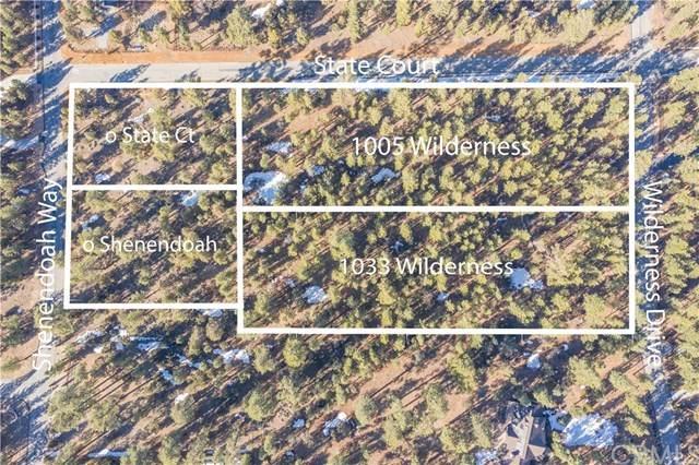 1005 Wilderness Drive - Photo 1