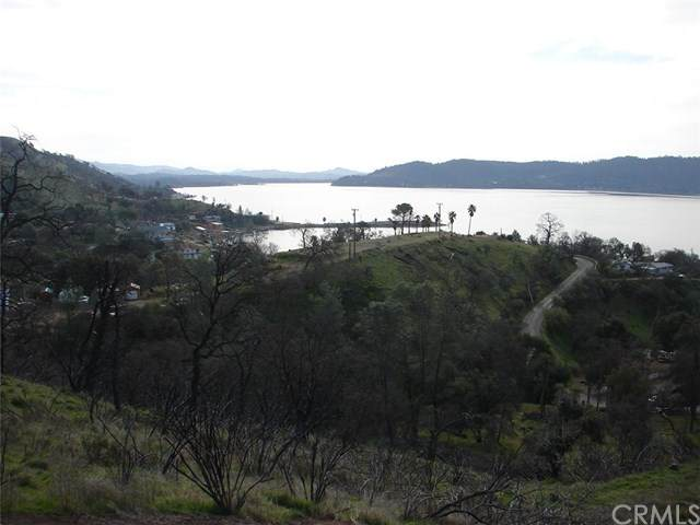 3105 Oak Crest Drive, Clearlake, CA 95424 (#LC21046368) :: Wendy Rich-Soto and Associates