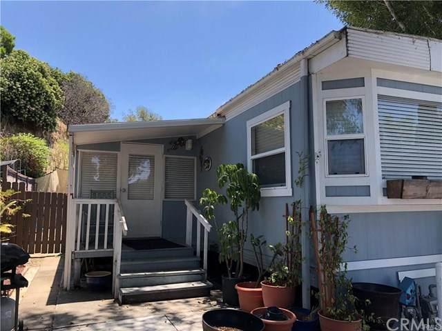 32802 Valle Rd #153, San Juan Capistrano, CA 92675 (#OC21050626) :: Hart Coastal Group