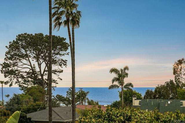 1514 Rubenstein Ave, Cardiff By The Sea, CA 92007 (#NDP2102608) :: Koster & Krew Real Estate Group | Keller Williams