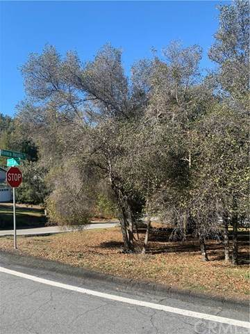 3100 Riviera Heights Drive, Kelseyville, CA 95451 (#LC21052538) :: eXp Realty of California Inc.