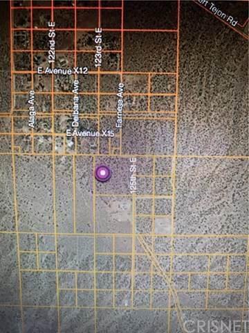 0 Vac/Vic Avenue Y/126 Ste, Littlerock, CA 93543 (#SR21052902) :: Koster & Krew Real Estate Group | Keller Williams
