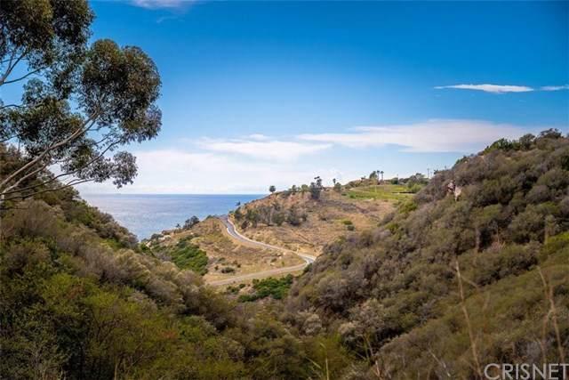 20715 Las Flores Mesa Drive - Photo 1