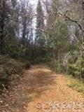 958 Mc Carthy Resvr Road - Photo 2