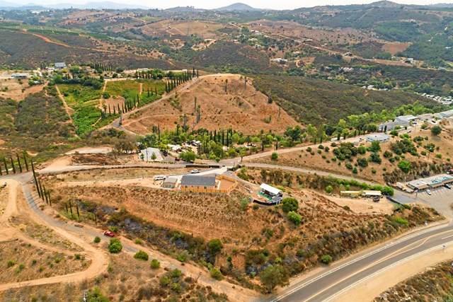 31454 Palos Verdes Drive - Photo 1