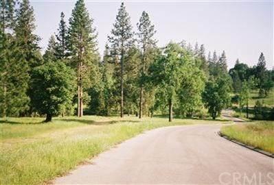 0 Lot #1 Road 226 - Photo 1