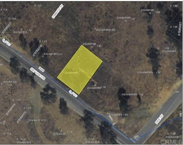 0 Skyline Dr, Lake Elsinore, CA 92530 (#PTP2101784) :: Power Real Estate Group