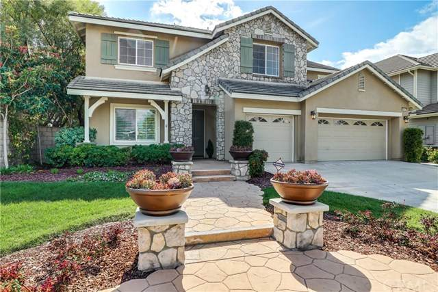 46107 Maple Drive, Temecula, CA 92592 (#SW21048685) :: Team Forss Realty Group