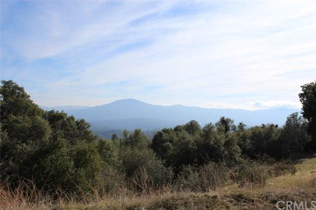 0-5.04 AC Road 628, Ahwahnee, CA 93601 (#FR21056680) :: Twiss Realty