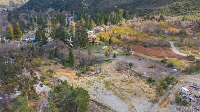 13720 Pollard Drive, Lytle Creek, CA 92358 (#PW21058481) :: Power Real Estate Group
