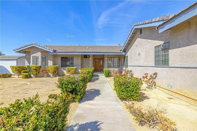 31713 157th Street E, Llano, CA 93544 (#SR21058456) :: Power Real Estate Group