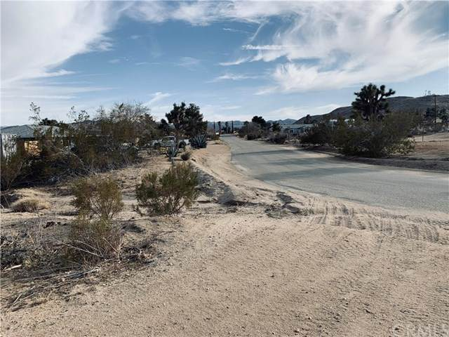 0 Goleta Avenue, Yucca Valley, CA 92284 (#JT21058625) :: Realty ONE Group Empire