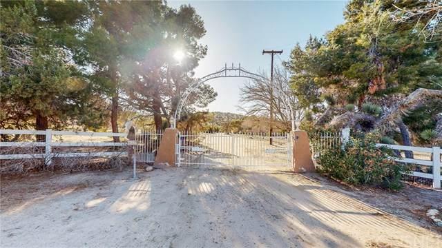 10141 E Avenue W14, Littlerock, CA 93543 (#SR21058874) :: Koster & Krew Real Estate Group | Keller Williams