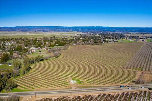 13960 State Highway 99 N, Chico, CA 95973 (#SN21059622) :: The Laffins Real Estate Team