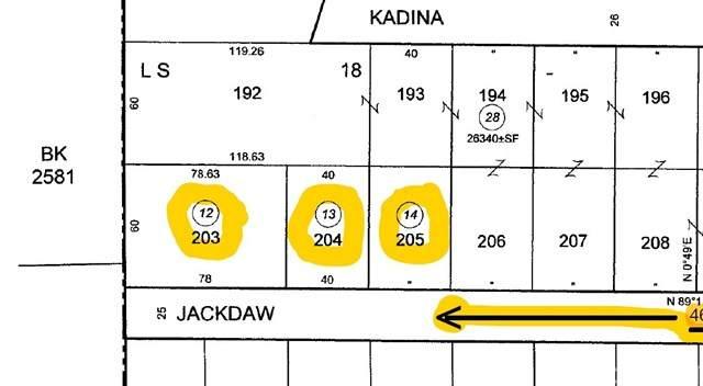 1234 Jackdaw Drive, Sylmar, CA 91342 (#SR21060336) :: The Brad Korb Real Estate Group