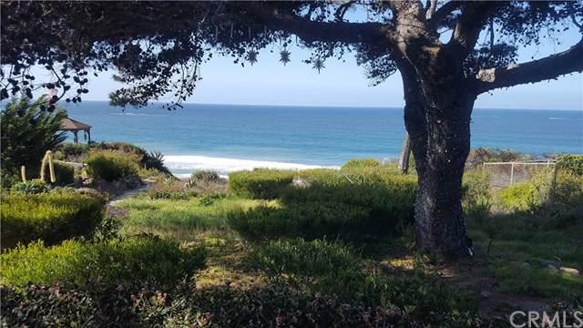 323 W Avenida Valencia, San Clemente, CA 92672 (#OC21060367) :: Steele Canyon Realty