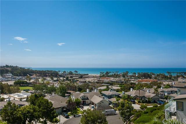 25432 Sea Bluffs Drive #305, Dana Point, CA 92629 (#OC21063042) :: Zen Ziejewski and Team