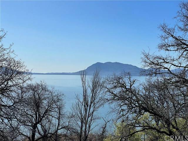 150 Mackie Road, Lakeport, CA 95453 (#LC21063568) :: Team Forss Realty Group