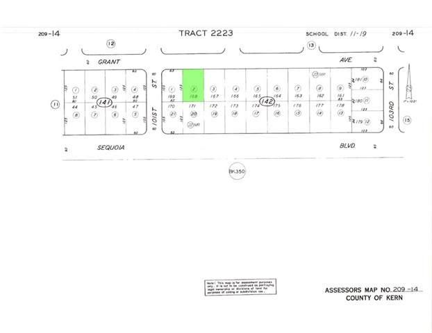 0 209-142-02-00-2 Grant Avenue - Photo 1