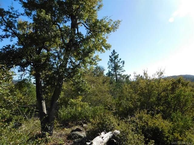 1 Pine Hills Rd, Julian, CA 92036 (#210008002) :: Koster & Krew Real Estate Group | Keller Williams