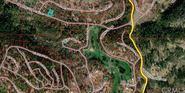 9660 Harrington Flat Road, Loch Lomond, CA 95461 (#LC21065477) :: Wendy Rich-Soto and Associates