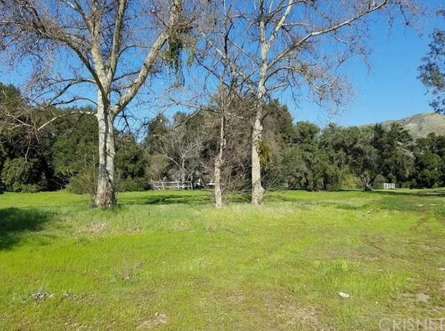 0 Warmsprings Rd., Canyon Country, CA 91387 (#SR21066307) :: The Brad Korb Real Estate Group