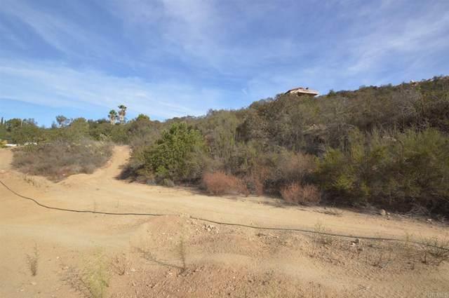 Vista De Chaparros, Jamul, CA 91935 (#PTP2102146) :: Steele Canyon Realty