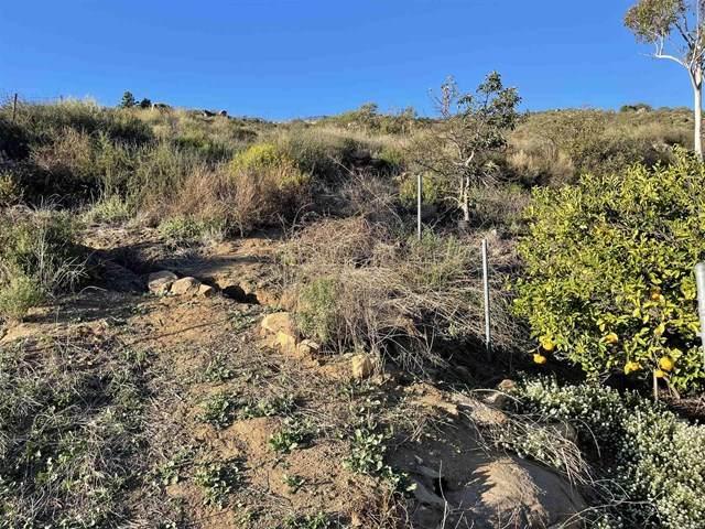 0 Jamul Drive, Jamul, CA 91935 (#PTP2102148) :: Steele Canyon Realty
