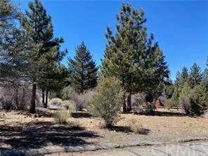 1296 Pinewood Drive Drive, Big Bear, CA 92314 (#PW21066864) :: Wendy Rich-Soto and Associates