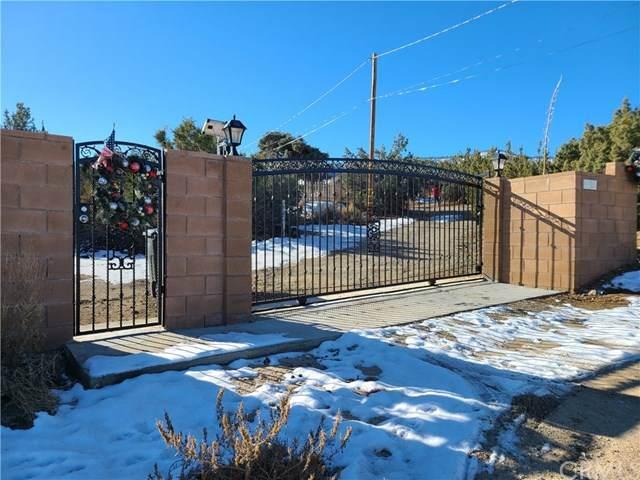1653 Hillview Road, Pinon Hills, CA 92372 (#CV21068068) :: eXp Realty of California Inc.