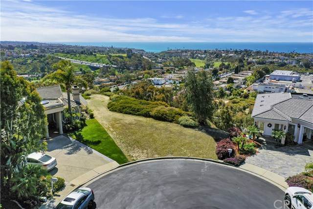 9 Via Tunas, San Clemente, CA 92673 (#SW21068725) :: Hart Coastal Group