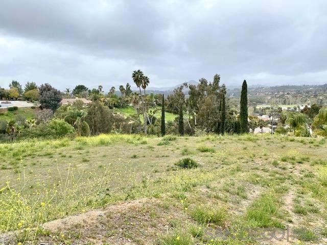 955 Gretna Green Way, Escondido, CA 92025 (#210008472) :: Koster & Krew Real Estate Group | Keller Williams