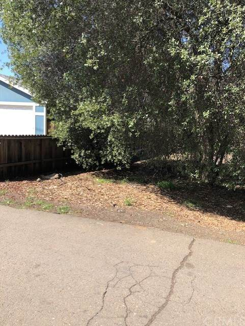 2951 9th Street, Clearlake, CA 95422 (#LC21069009) :: Wendy Rich-Soto and Associates