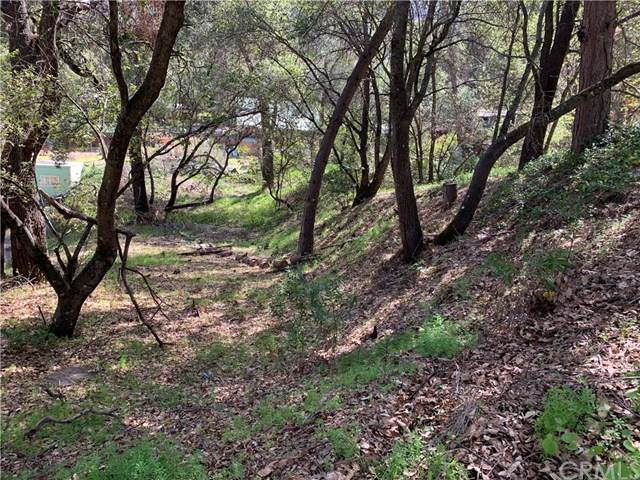 3604 Oak Drive, Kelseyville, CA 95451 (#LC21069068) :: Swack Real Estate Group | Keller Williams Realty Central Coast