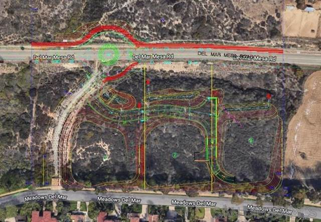 2 Del Mar Mesa Rd 2, San Diego, CA 92130 (#210008580) :: Steele Canyon Realty