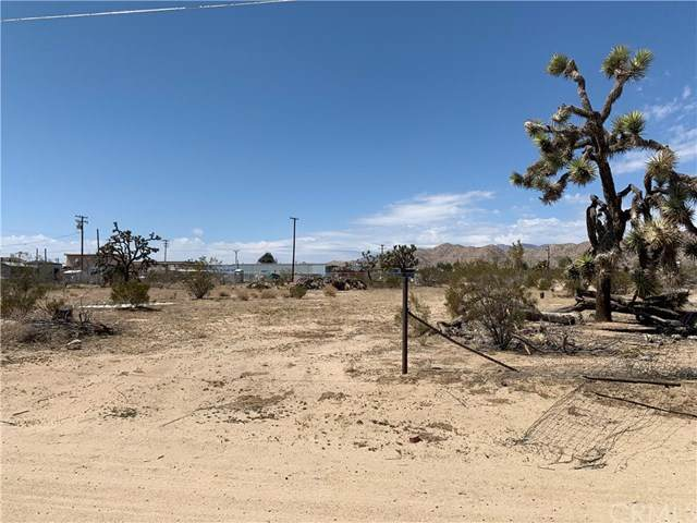 7248 Scarvan Road, Yucca Valley, CA 92284 (#JT21071179) :: Team Tami