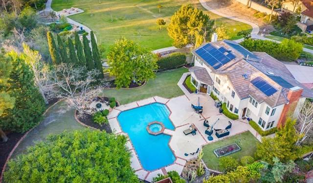 948 Springwood Lane, Encinitas, CA 92024 (#NDP2103618) :: Koster & Krew Real Estate Group | Keller Williams